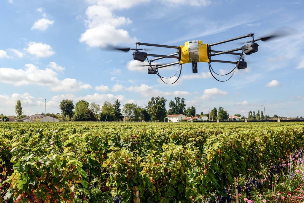 Drone over French vineyard.