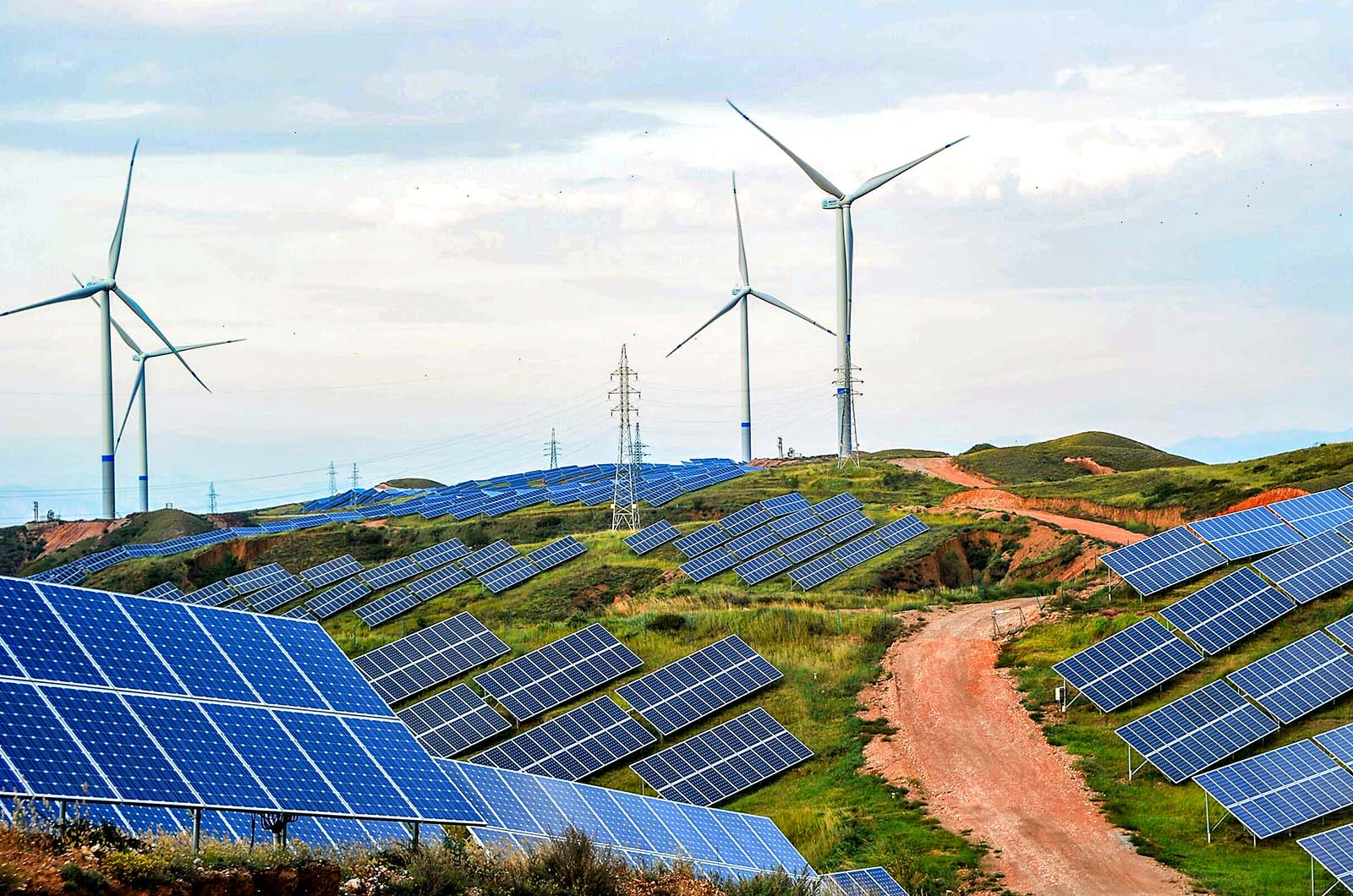 Why Are Top Companies Pushing for 100 Percent Renewable Energy? – BRINK –  News and Insights on Global Risk